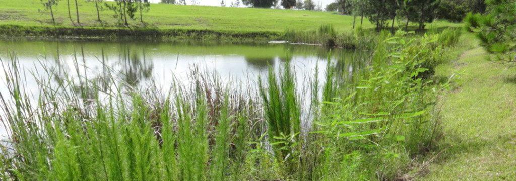 Pond Maintenance, Orlando swppp services